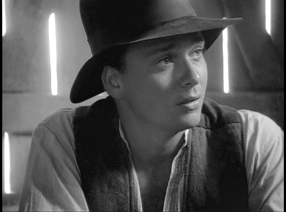 Sean Patrick Flanery as Young Indy.